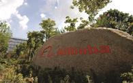 Alibaba faces legal action over counterfeit goods