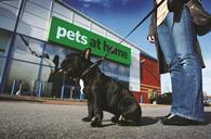 Pets at Home saw like-for-like sales jump 4.2% in its first year since floating on the stock exchange, driven by a focus on health and wellbeing.