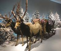 Retail Week predicts this year\'s big Christmas trends